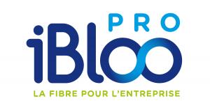 ibloo_pro